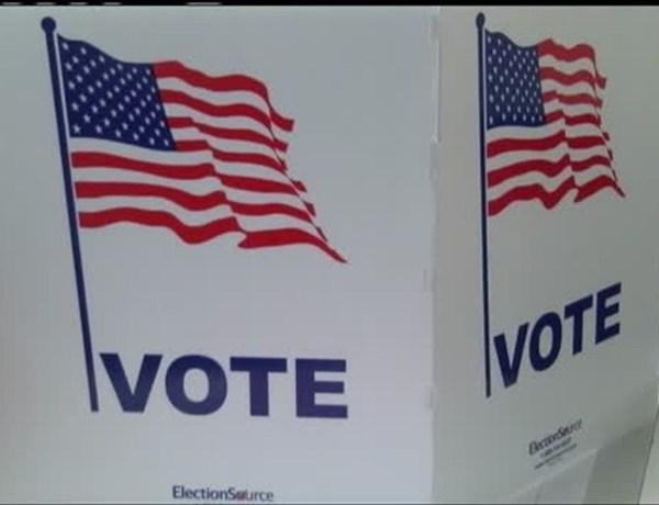 Voting _4661390157913277611