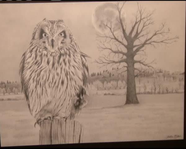 Wildcat Glades to showcase the art of a Neosho teacher_70608937