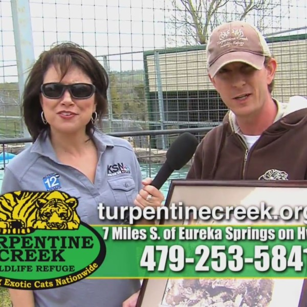 Turpentine Creek Wildlife Refuge - Cats & Castle's (041819)