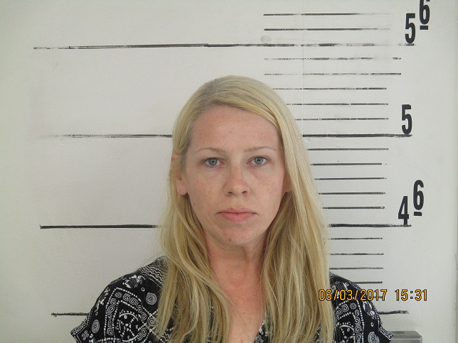 Female Catholic school teacher named Randi is charged with
